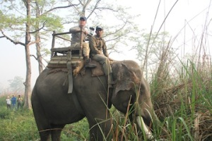 mounting up with babu my mahout (elephant driver). we are getting set for daytime patrol...searching signs of poachers.